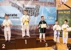 Karate2019 100